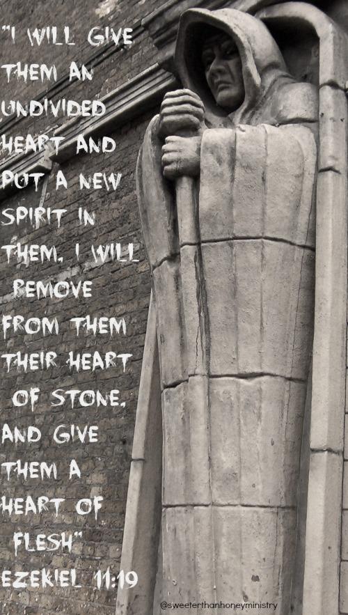 Ezekiel 11-19pic