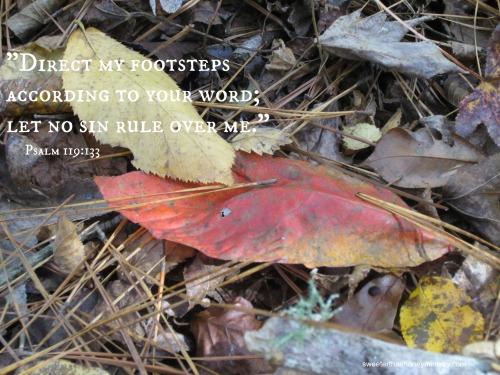 psalm119-133pic