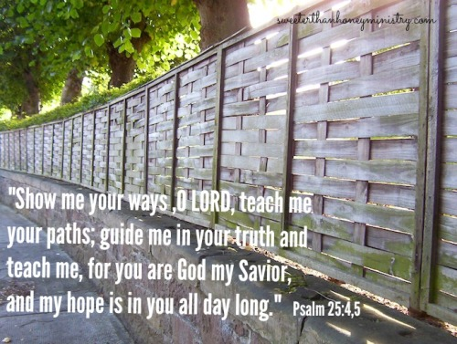 fence psalm 25-4,5