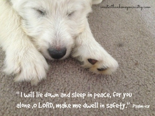 delta sleeping psalm 4-8